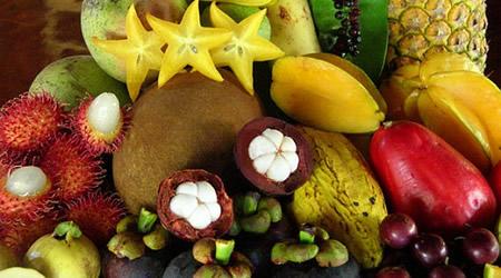Тропическите плодове (I част)
