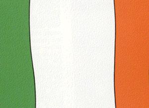 Ирландска кухня
