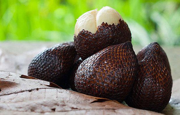 Тропическите плодове - първа част