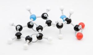 Aminokiselini