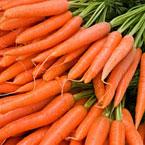 Моркови - хрупкави, полезни и достъпни