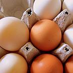 Митове в бодибилдинга: целите яйца и съдържанието им на холестерол