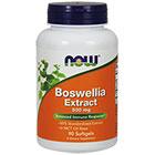 NOW Foods Boswellia Extract